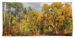 Autumn Medley Along The Creek Hand Towel