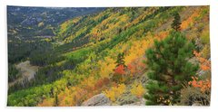 Hand Towel featuring the photograph Autumn On Bierstadt Trail by David Chandler