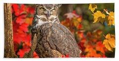 Autumn Owl Bath Towel