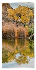 Autumn Reflection At Boyce Thompson Arboretum Hand Towel