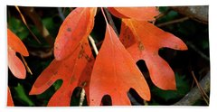 Autumn Sassafras Leaves Bath Towel