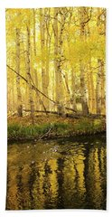 Autumn Soft Light In Stream Hand Towel