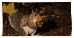 Autumn Squirrel Bath Towel by Matt Malloy