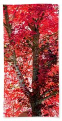 Autumn Tree Hand Towel by Michael Dohnalek