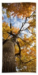 Autumn Tree Bath Towel