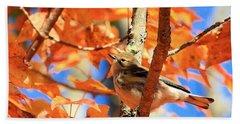 Autumn Warbler Bath Towel by Debbie Stahre