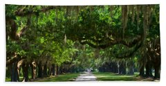 Avenue Of The Oaks At Boonville Plantation Hand Towel