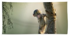 Baby Baboon In Tree Hand Towel
