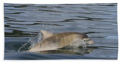 Baby Bottlenose Dolphin - Scotland  #35 Bath Towel