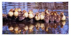 Baby Ducks On A Log Hand Towel by Stephanie Hayes