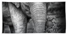 Baby Elephant 1 Hand Towel by Charuhas Images