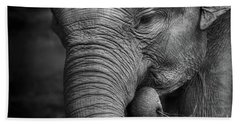 Baby Elephant Close Up Hand Towel by Charuhas Images