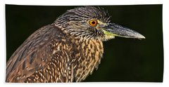Baby Face - Yellow-crowned Night Heron  Hand Towel by HH Photography of Florida