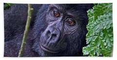 Baby Gorilla Bath Towel