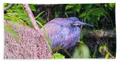 Baby Great Blue Heron - Ardea Herodias Bath Towel