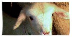 Baby Lamb Hand Towel