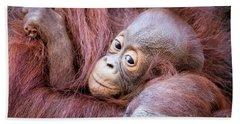 Baby Orangutan Bath Towel by Stephanie Hayes