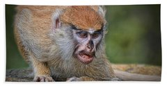 Baby Patas Monkey On Guard  Hand Towel