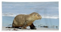Baby Sea Lion On Seals Bay Bath Towel