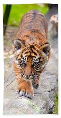 Baby Sumatran Tiger Cub Bath Towel by Richard Bryce and Family