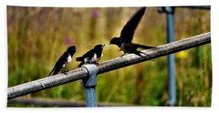 Baby Swallows Feeding Hand Towel