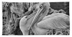 Baby White Pelican Talks To Mother White Pelican Bath Towel