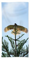 Backlit Landing Hawk Hand Towel