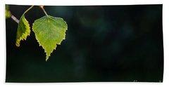 Bath Towel featuring the photograph Backlit Shiny Leaf by Kennerth and Birgitta Kullman