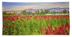 Backroad Beauty In Southern California Hand Towel