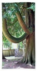 Backyard Cedar Hand Towel