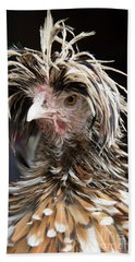 Bad Hair Day For A Frizzle Tolbount Polish Hen Hand Towel