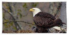 Bald Eage In Nest Hand Towel by Ann Bridges
