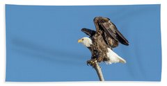 Bald Eagle Bath Towel
