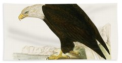 Bald Eagle Hand Towel by English School