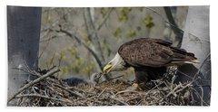 Bald Eagle Feeding Hand Towel by Ann Bridges