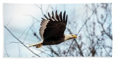 Bald Eagle Flight Hand Towel