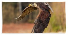 Bald Eagle In Flight Hand Towel
