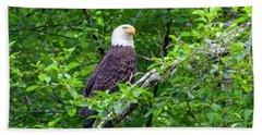 Bald Eagle In Tree Hand Towel