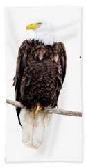 Bald Eagle Hand Towel