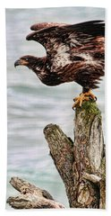 Bath Towel featuring the photograph Bald Eagle On Driftwood At The Beach by Peggy Collins