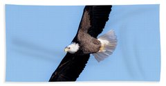 Bald Eagle Overhead  Hand Towel