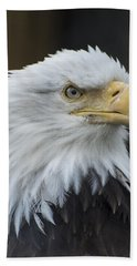 Bald Eagle Portrait Bath Towel by Gary Lengyel