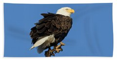 Bald Eagle Squared Bath Towel