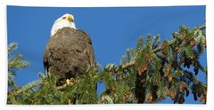 Bald Eagle Sunbathing Bath Towel