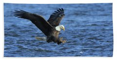 Bath Towel featuring the photograph Bald Eagle Talons Up by Coby Cooper