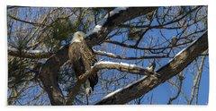 Bald Eagle Watching Her Domain Hand Towel