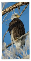 Bald Eagle With Pogo Nip Bath Towel