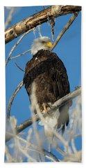 Bald Eagle With Pogo Nip Bath Towel