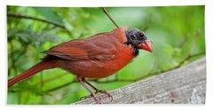 Bald Northern Cardinal Hand Towel