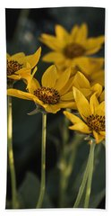 Balsamroot Bloom On A Spring Evening Hand Towel